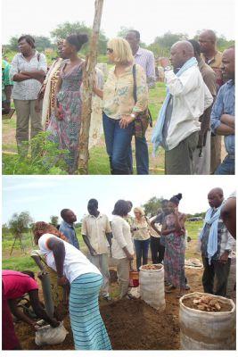 Visite de l'Exécutive Master en Politiques et Pratiques du Développement (DPP) de l'Institut de Hautes Etudes Internationales et du Développement (IHIED) de Génève à la ferme agricole de Yelemani à Loumbila