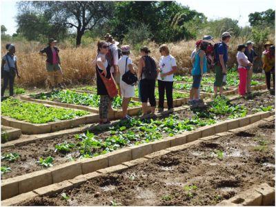 Visite du site maraîcher de Yelemani à Loumbila par un groupe de femmes du CLIF.